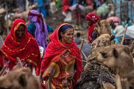 muslimah 14 di Afrika
