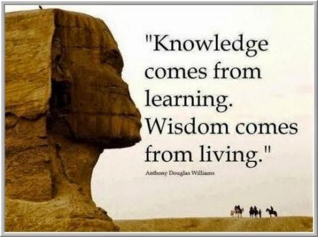 Wisdom 5